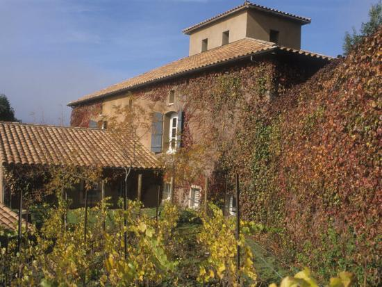 alan-klehr-viansa-winery-and-italian-marketplace-sonoma-california-usa