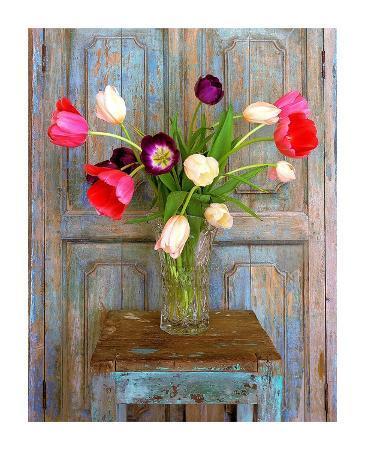 alan-klug-tulips-mexico