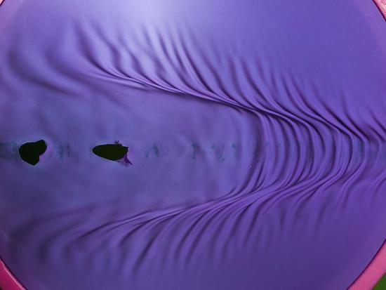 alan-sailer-rubber-wave