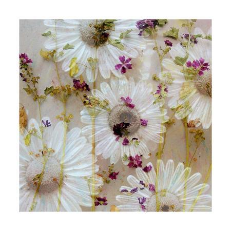 alaya-gadeh-acre-flowers