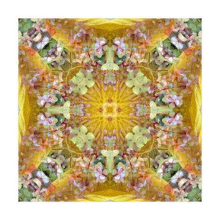 alaya-gadeh-autumn-leaf-ornament-xxvii