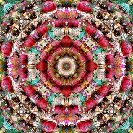 alaya-gadeh-mandala-ornament-from-flower-photographs