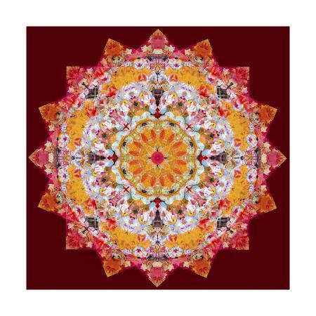 alaya-gadeh-ornamental-flower-mandala-268