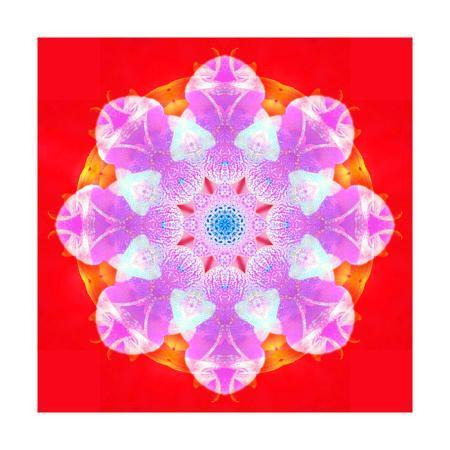 alaya-gadeh-pink-blossom-mandala-circle