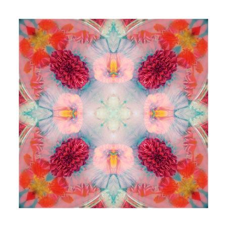 alaya-gadeh-pink-delicateness