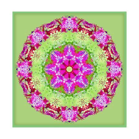 alaya-gadeh-pink-mandala-on-green