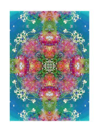 alaya-gadeh-the-beauty-of-all-colors-big-mandala-ornament