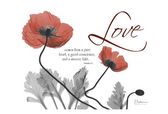 albert-koetsier-love-poppies-in-red