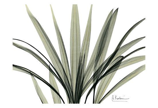 albert-koetsier-mini-palm-tree