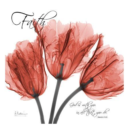 albert-koetsier-royal-red-tulip-faith