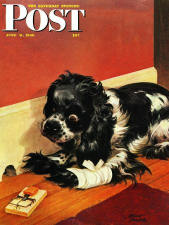 albert-staehle-butch-and-mousetrap-saturday-evening-post-cover-june-8-1946
