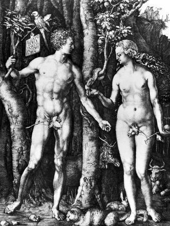 albrecht-duerer-d-rer-adam-eve-1504