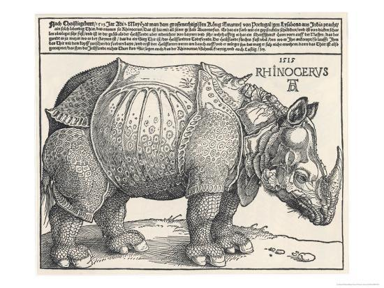 albrecht-duerer-the-indian-rhinoceros-is-the-largest-of-the-asian-spiecies