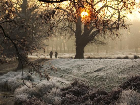 alex-saberi-a-couple-walk-in-the-winter-in-richmond-park
