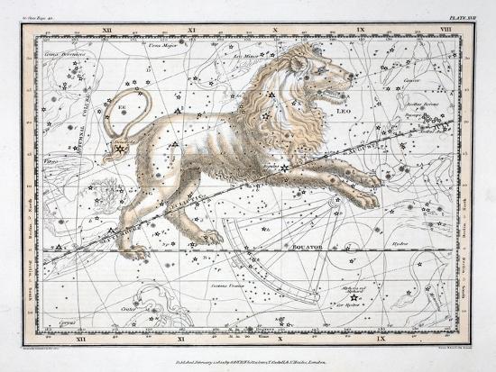 alexander-jamieson-the-constellations