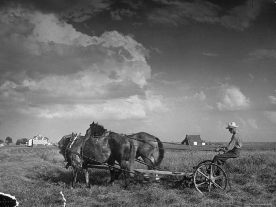 alfred-eisenstaedt-farmer-driving-horses-in-the-field