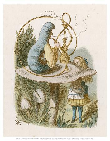 alice-mushroom