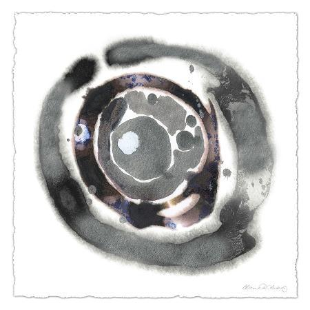 alicia-ludwig-meteorite-i