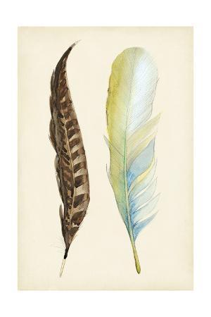 alicia-ludwig-plumage-ii