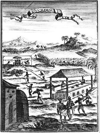 allain-manesson-mallet-sugar-factory-and-plantation-in-the-west-indies-1686