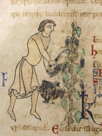 allegory-of-september-miniature-from-a-martyrology-12th-century