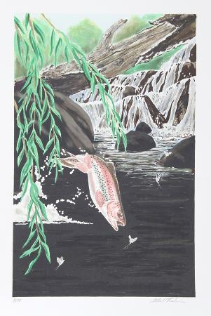 allen-friedman-rainbow-trout