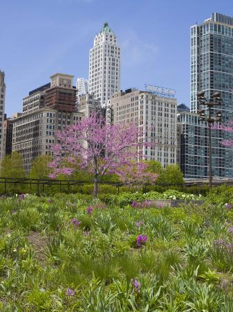 amanda-hall-lurie-garden-millennium-park-chicago-illinois-united-states-of-america-north-america