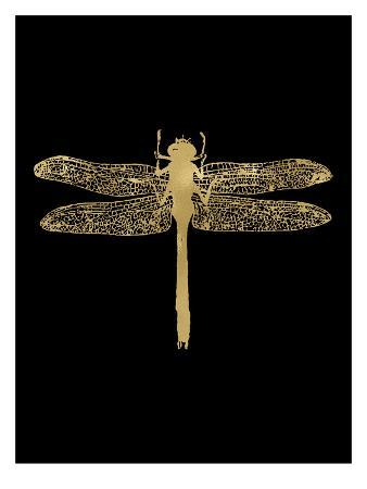 amy-brinkman-dragonfly-golden-black