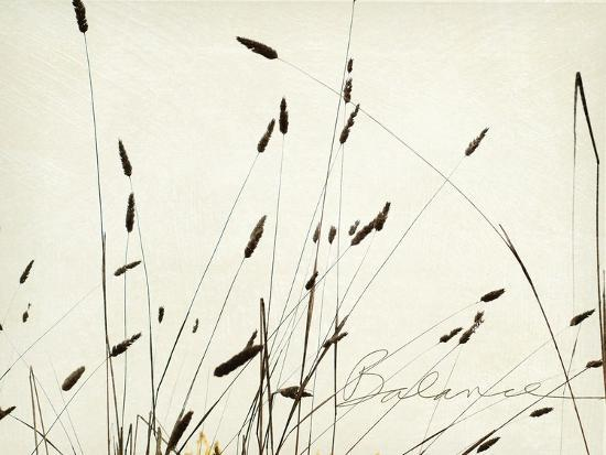 amy-melious-grass-balance
