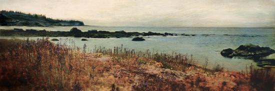 amy-melious-island-shores-i