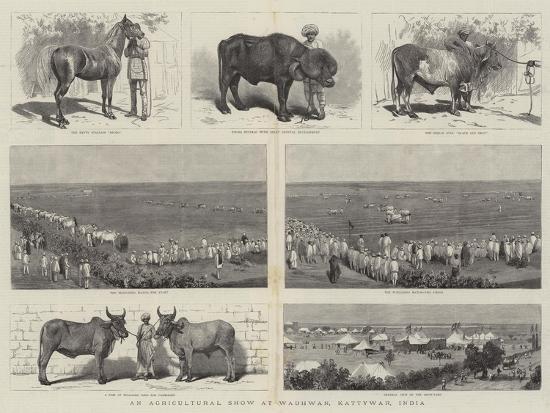 an-agricultural-show-at-wadhwan-kattywar-india