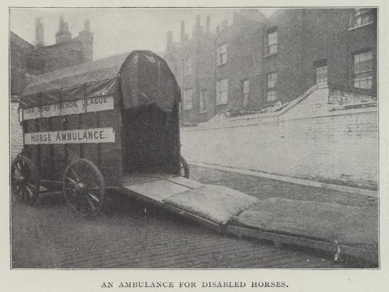an-ambulance-for-disabled-horses