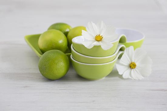andrea-haase-cosmea-flower-white-shells-lime-green-still-life