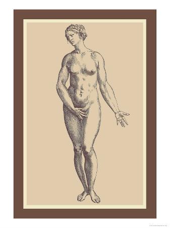 andreas-vesalius-woman
