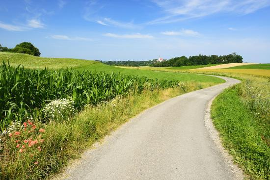 andreas-vitting-cultivated-landscape-with-country-lane-meadows-and-fields-behind-andechs-abbey-andechs-bavaria