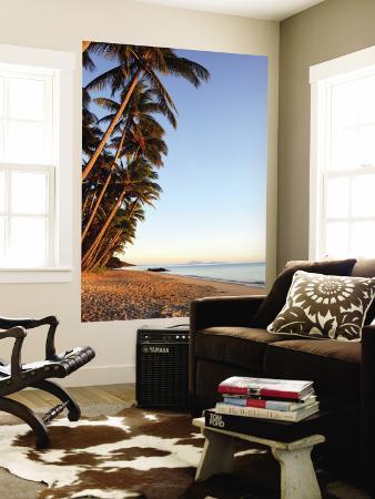 andrew-bain-dawn-on-ellis-beach-near-palm-cove