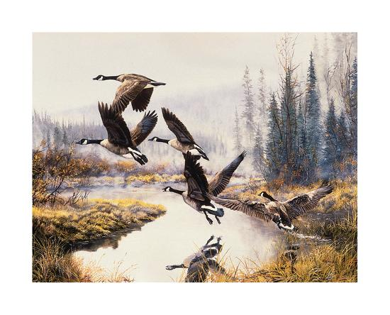 andrew-kiss-geese-fall-flight