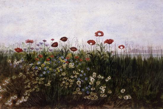 andrew-nicholl-flowers-on-the-irish-coast