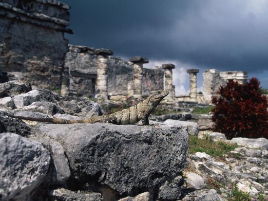 angelo-cavalli-mayan-ruins-tulum-mexico