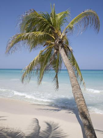angelo-cavalli-negril-jamaica-west-indies-caribbean-central-america