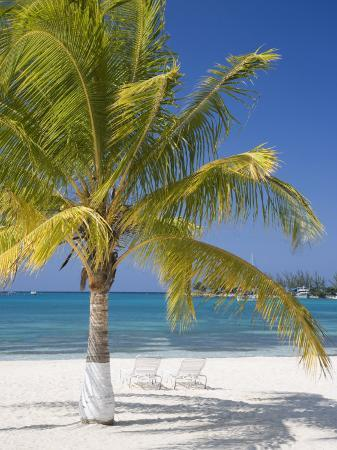 angelo-cavalli-ocho-rios-jamaica-west-indies-caribbean-central-america