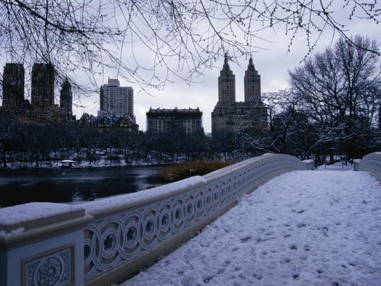 angus-oborn-central-park-in-winter-new-york-city-new-york-usa