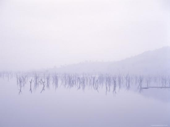 angus-oborn-lake-eildon-in-rain