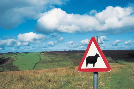 animal-sign-board