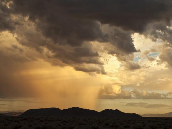 ann-collins-usa-california-mojave-national-preserve-desert-rain-squall-at-sunset