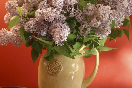 anna-miller-lilac-flowers-in-vase