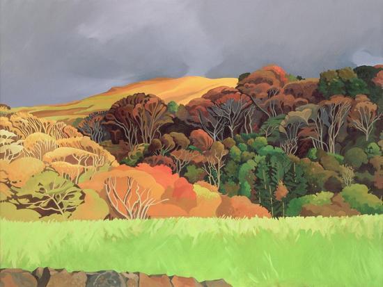 anna-teasdale-calgary-woods-isle-of-mull