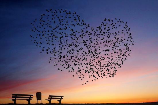 annemieke-love-is-in-the-air