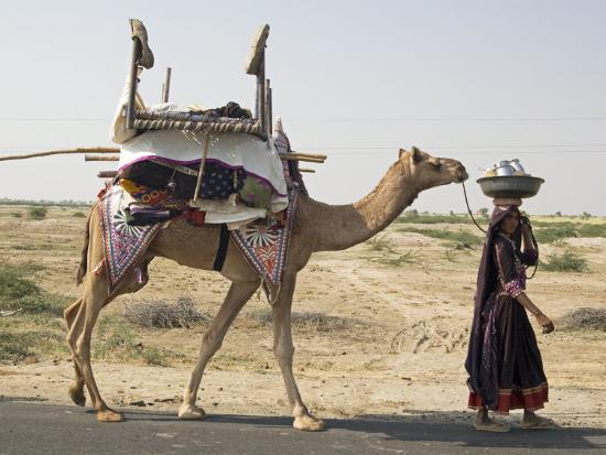 annie-owen-nomadic-rabhari-tribeswoman-walking-in-the-kachchh-desert-lakhdar-district-gujarat