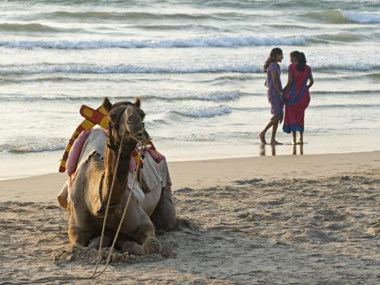 annie-owen-two-girls-on-beach-at-dusk-camel-waiting-ganpatipule-karnataka-india-asia